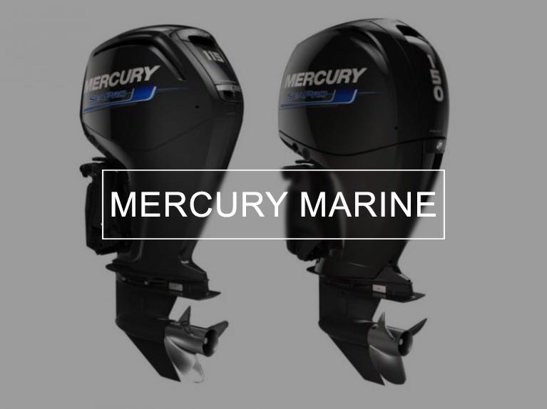 motori mercury marine roma